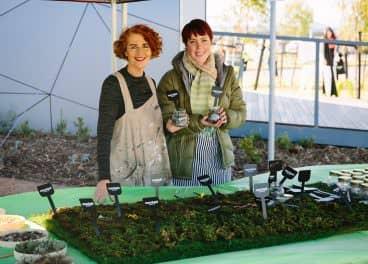 women gardening in merrifield