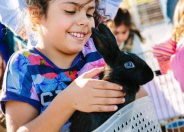 child with bunny rabbit